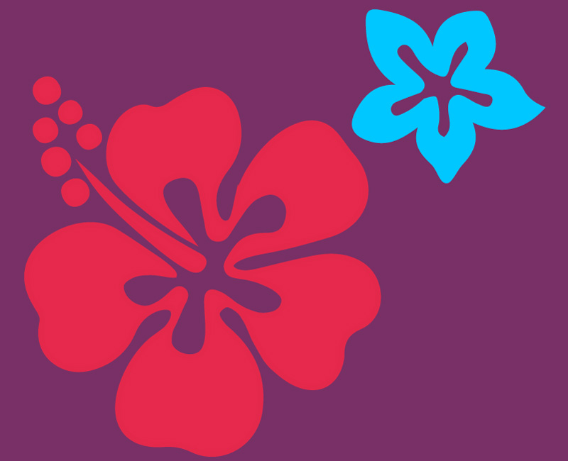 massage lomi-lomi hawaï huiles essentielles pour effacer la fatigue