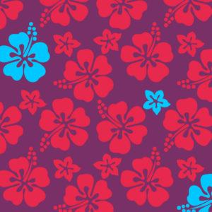 massage lomi-lomi hawaï huiles essentielles
